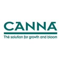 Canna (6)